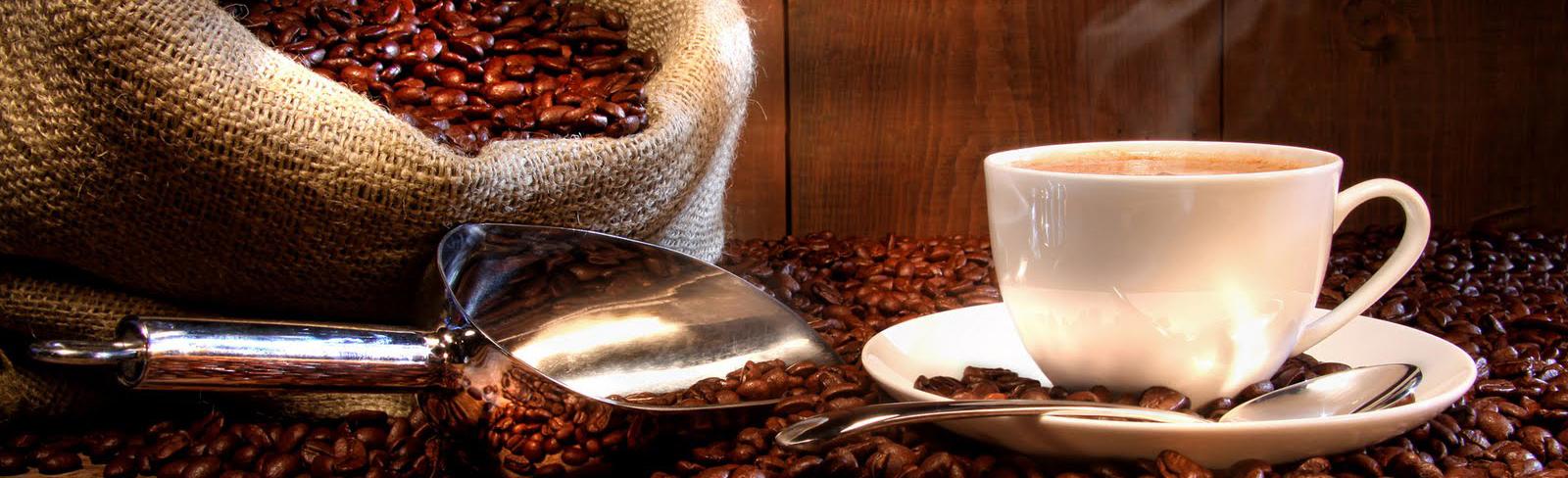 Ixhuatlán del Café